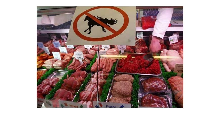 Belgium at the forefront of the fight against illegal horse meat.
