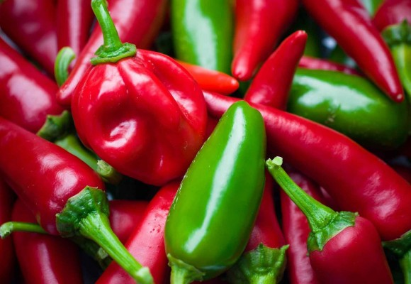 Which dishes are best to accompany with habanero chili sauce?